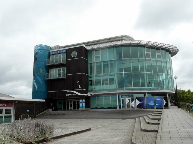 plymouth attractions national marine aquarium